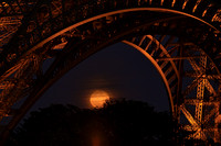 Eiffel Moonglow 1 - 5