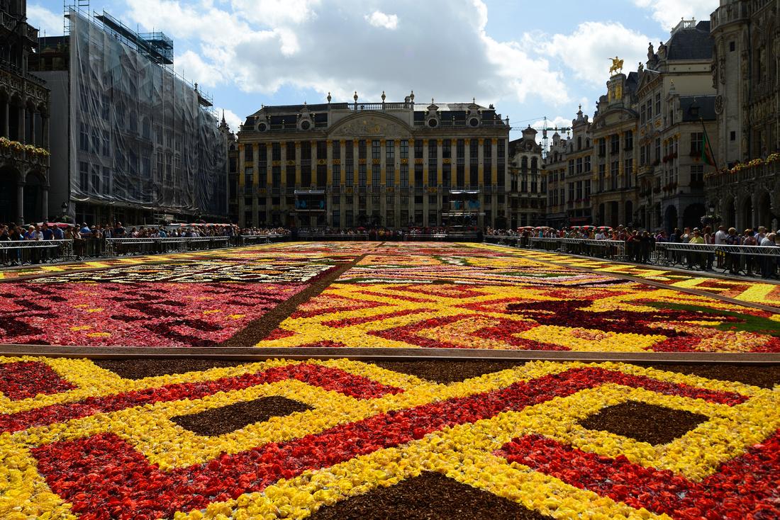 Brussels Flower Carpet Original