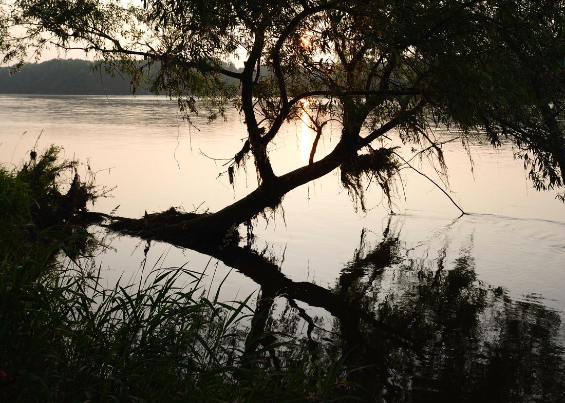Mississippi sur Loire